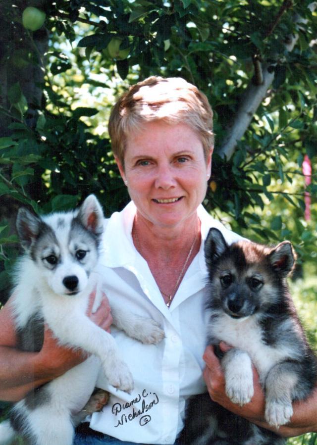 Diane n wolf pups