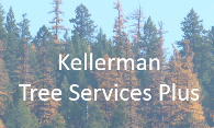 Kellerman Tree Services Plus